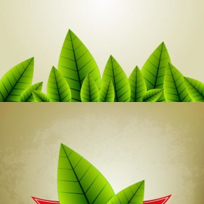 Vector green leaves