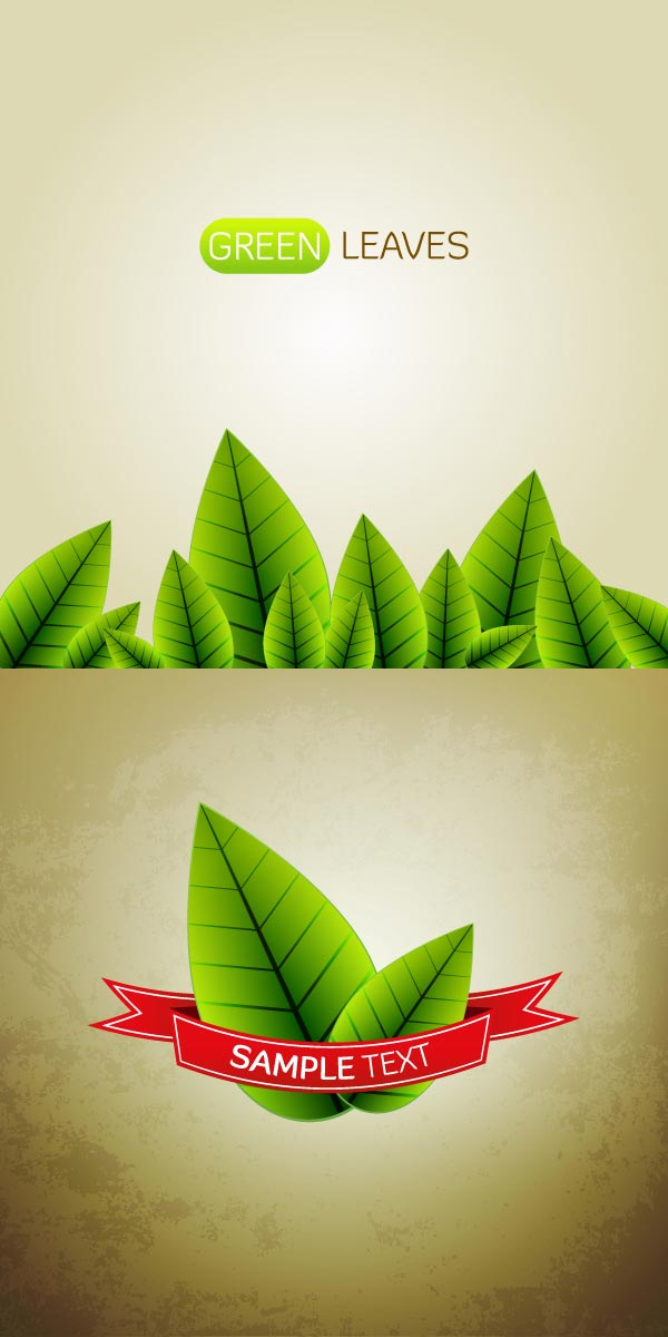 15-vector-leaves