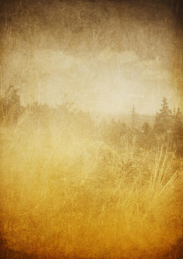 Nature grunge background